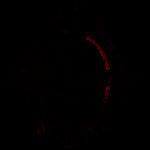 Imanje Luna Logo